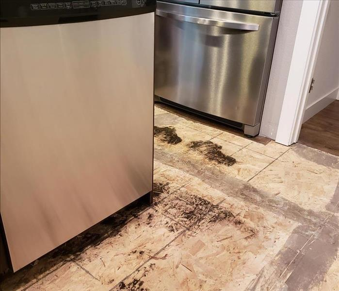 HEPA Vacuum Removes Mold From Subfloor Before