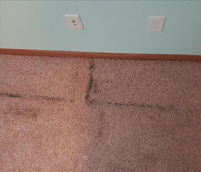 Carpet Cleaning Under Furniture Before