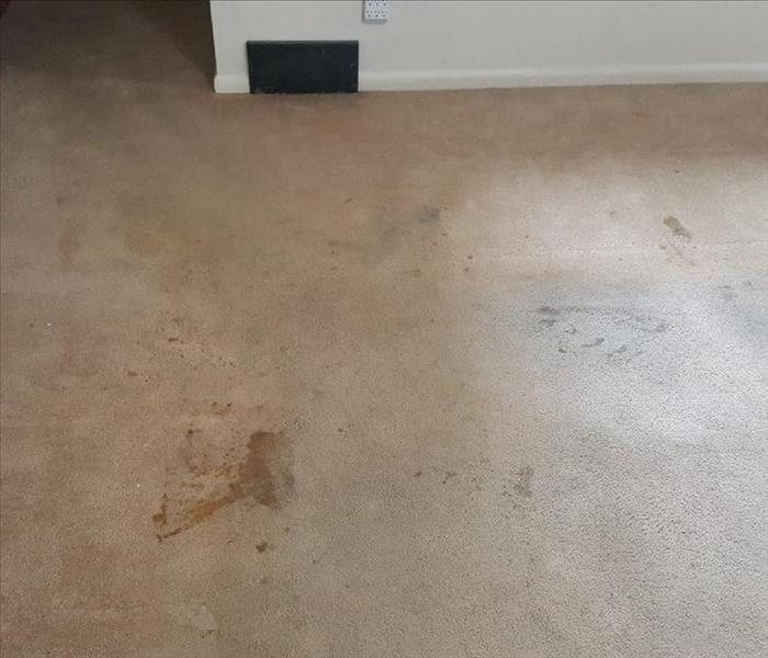 Cleaning Nicotine Stains off of Carpet. Before