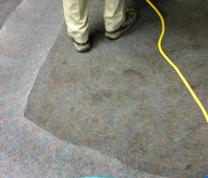 Carpet cleaning grease spill