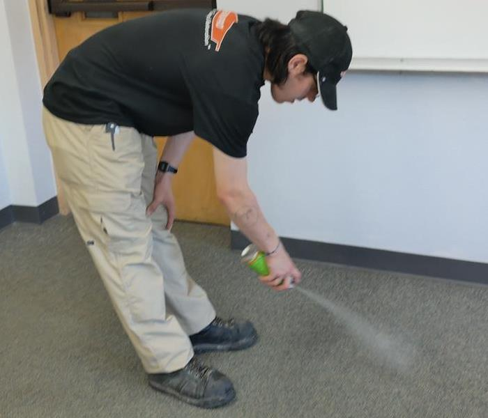 Spot Cleaning in Catholic School