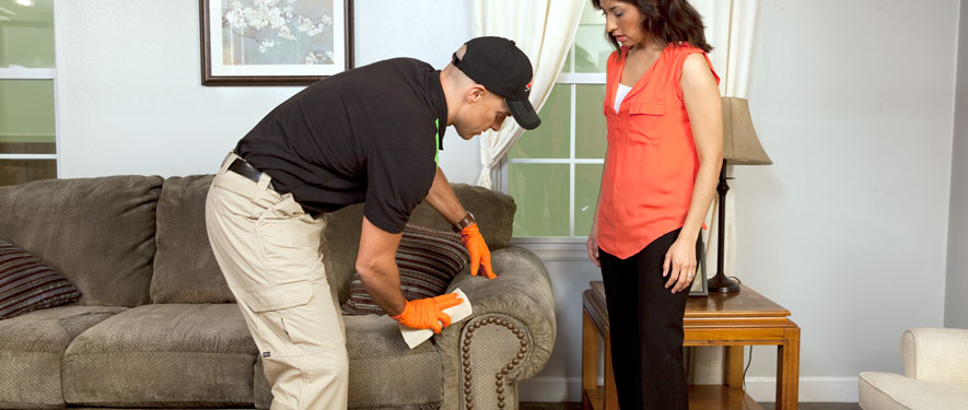 Cedar Falls, IA carpet upholstery cleaning